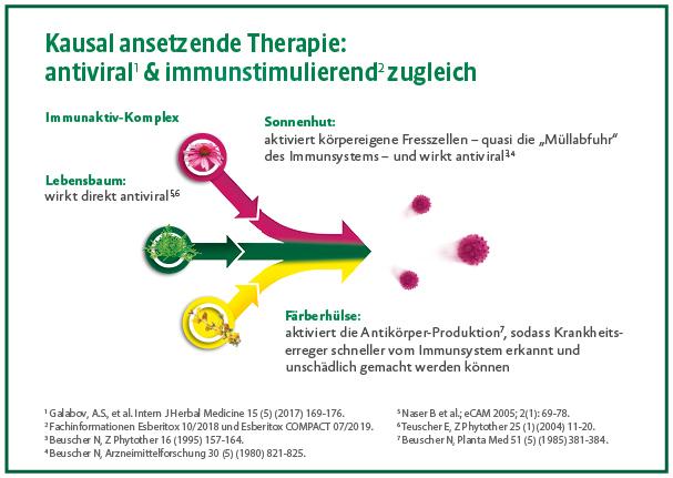 esberitox_immunaktivkomplex.png
