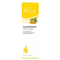 LYMPHDIARAL DS Salbe - 40g